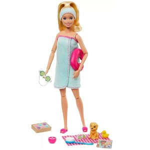 Boneca Barbie Fashionista Dia de Spa com Pet Mattel