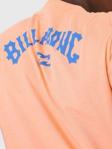 Camiseta Billabong Arch Wave