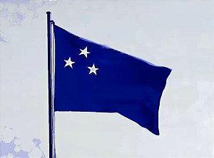 SUL-BD1000200 Bandeira