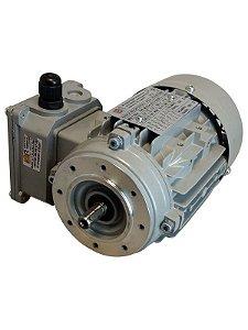 Motor elétrico IBR MS trifásico