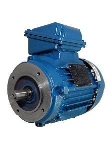 Motor elétrico WEG - W22 IR3 Premium