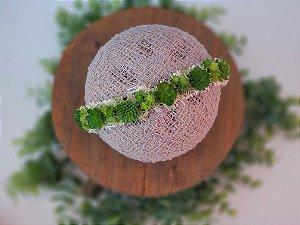 Coroa Suculenta Verde