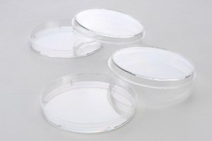 Placa de Petri Para Cultivo de Células