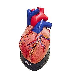 Coração Ampliado com 5 Partes - TGD-0322-A