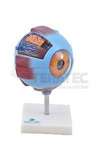 Olho Ampliado em 7 Partes - SD-5043
