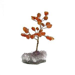 Árvore Cornalina com Base em Ametista Bruta (10cm)