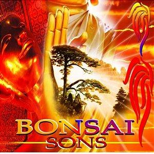 CD Bonsai Sons New Age - Músicas belíssimas