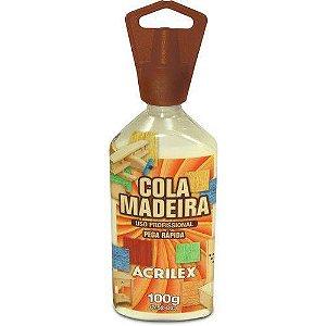 Cola Para Madeira Acrilex Cola Madeira 100g Acrilex