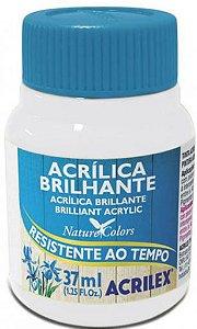 TINTA ACRILICA BRILHANTE BRANCO 37ML ACRILEX 519