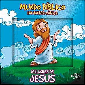 LIVRO HISTORIA CD MILAGRES DE JESUS EM QUEBRA-CABECA TODO O LIVRO