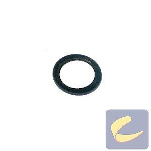 Arruela Lisa M33x23x2 Pr - Pneumáticas - Chiaperini