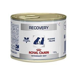 Alimento Úmido de Prescrição para Cães e Gatos - Royal Canin Recovery 195g