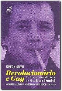 Revolucionário e Gay