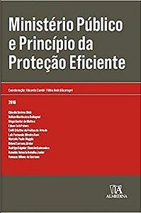 Ministério Público e Princípio da Protecão Eficiente - 01Ed/16