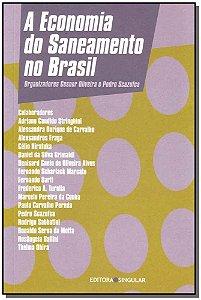 Economia do Saneamento no Brasil, A