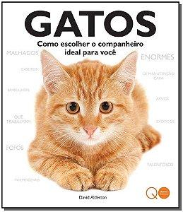 Gatos: Como Escolher O Companheiro Ideal Para Voce
