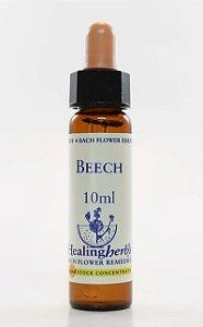 Floral de Bach Beech - Essência Estoque 10mL