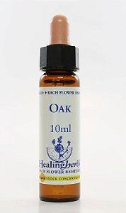 Floral de Bach Oak - Essência Estoque 10mL