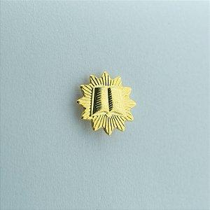 BT-199-D - Pin Mini Joia Orador Dourado