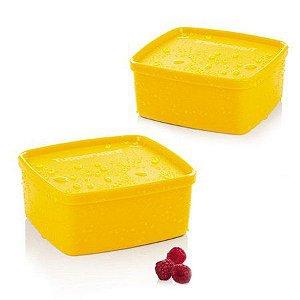 Tupperware Jeitosinho Maracujá 500ml kit 2 peças