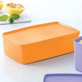 Tupperware Pote Ideal Mango 1,4 Litros