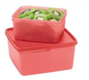 Tupperware Basic Line 500 ml Guava + Basic Line 1,2 Litros Guava