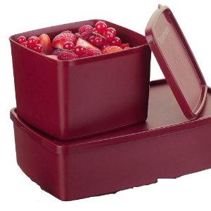 Tupperware Kit com Jeitoso e Caixa Ideal Marsala