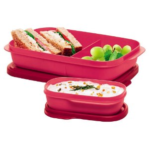 Tupperware Basic Line Slim com Divisórias 590ml e Basic Line Slim 120ml