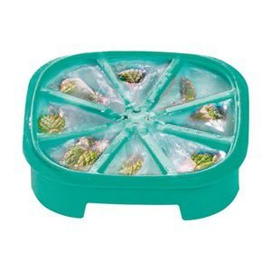 Tupperware Forma de Gelo Triangular Verde