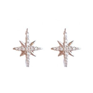 Brinco Earhook Star Silver