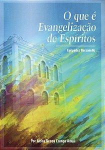 Que é Evangelização de Espíritos (O)