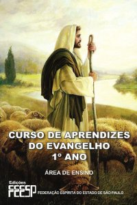Curso de Aprendizes do Evangelho (1º Ano)