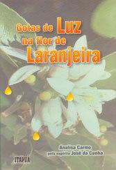 Gotas de Luz Na Flor de Laranjeira