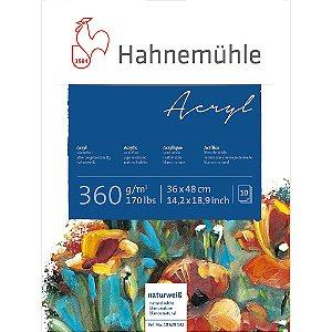 Bloco Acrílico Acryl Hahnemuhle 360 g/m² 36x48 10 Folhas