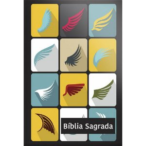 Bíblia Sagrada Nvi Grande 2 cores - Capa Especial Alado