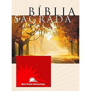 Bíblia Sagrada Nvi Média - Capa Brochura
