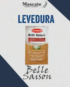 Levedura Belle Saison - Lallemand