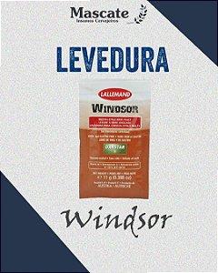 Windsor - Lallemand