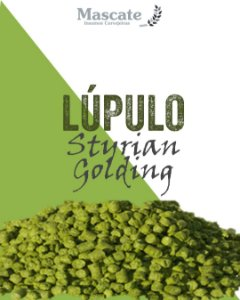 Lúpulo Styrian Golding