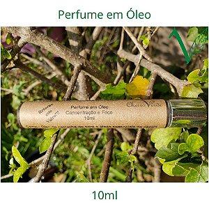 Perfume em Óleo