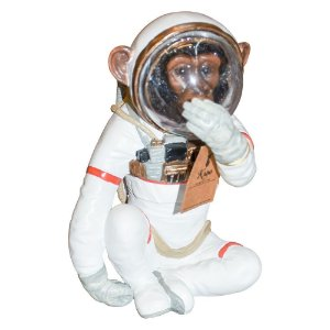 Macaco Astronauta Mudo