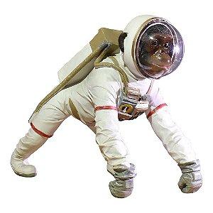 Macaco Astronauta Space