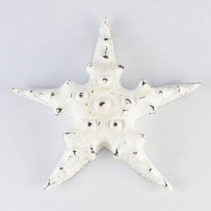 Enfeite Estrela Rústica Branca G