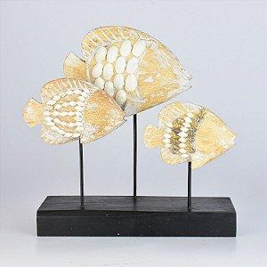 Peixes com Conchinhas Decor