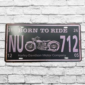 Placa Carro Decorativa Moto Born To Ride Alto Relevo