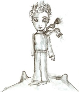 A Sombra do Pequeno Príncipe