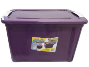 Caixa Organizadora 20 Litros Multiuso Roxa Agraplast