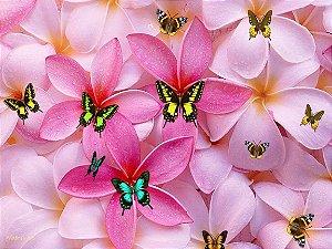 Floral borboletas 01 a4