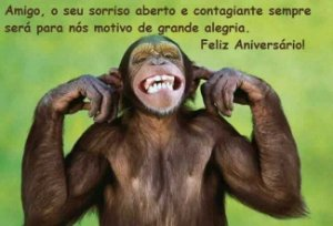 FELIZ ANIVERSÁRIO MACACO 01 A4