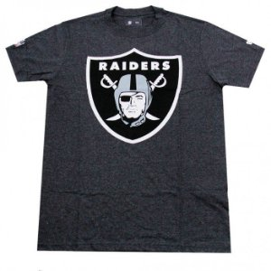 Camiseta Oakland Raiders Basic Logo Cinza - New Era